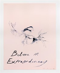 Tracey Emin Believe In Extraordinary SMALL
